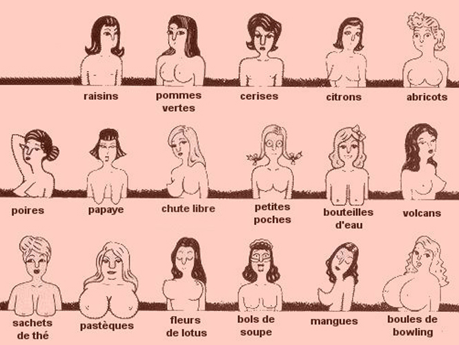 Différentes formes des seins